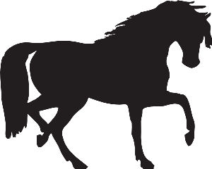 Link for Equine Products
